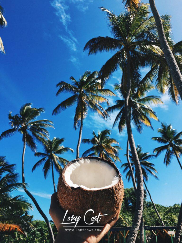 caribbean-vibes